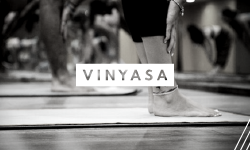 vinyasa-yoga.png