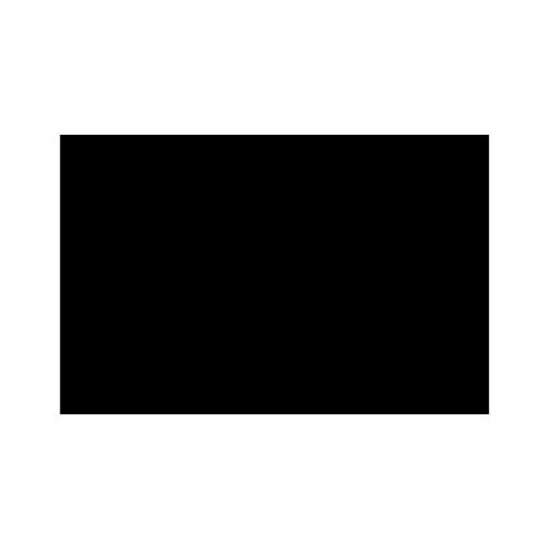 visit-syv-logo.png