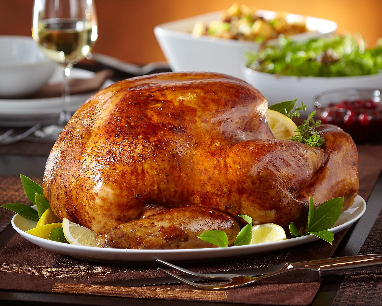 TurkeyShot2Alt.jpg
