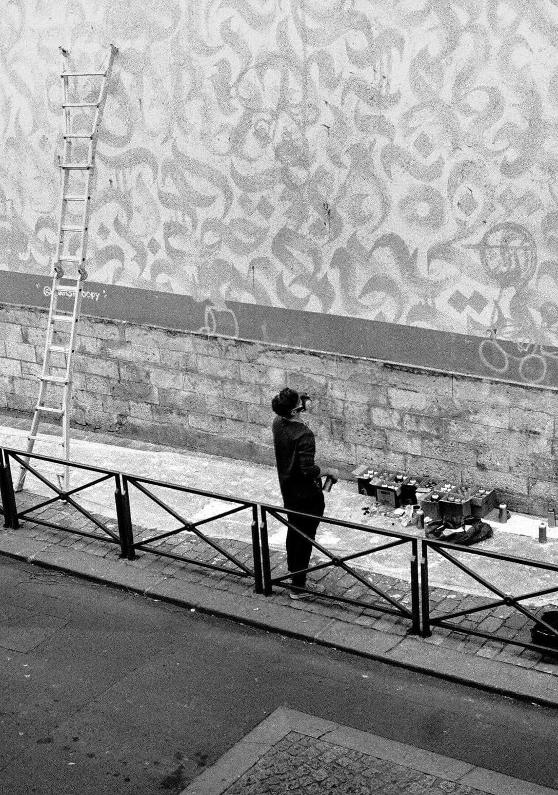 WIP   Makin' WIP mural for Mairie Paris 13  2018  © Silvio Verrier