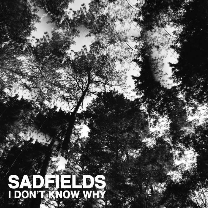 Sadfields I don't know why.jpg