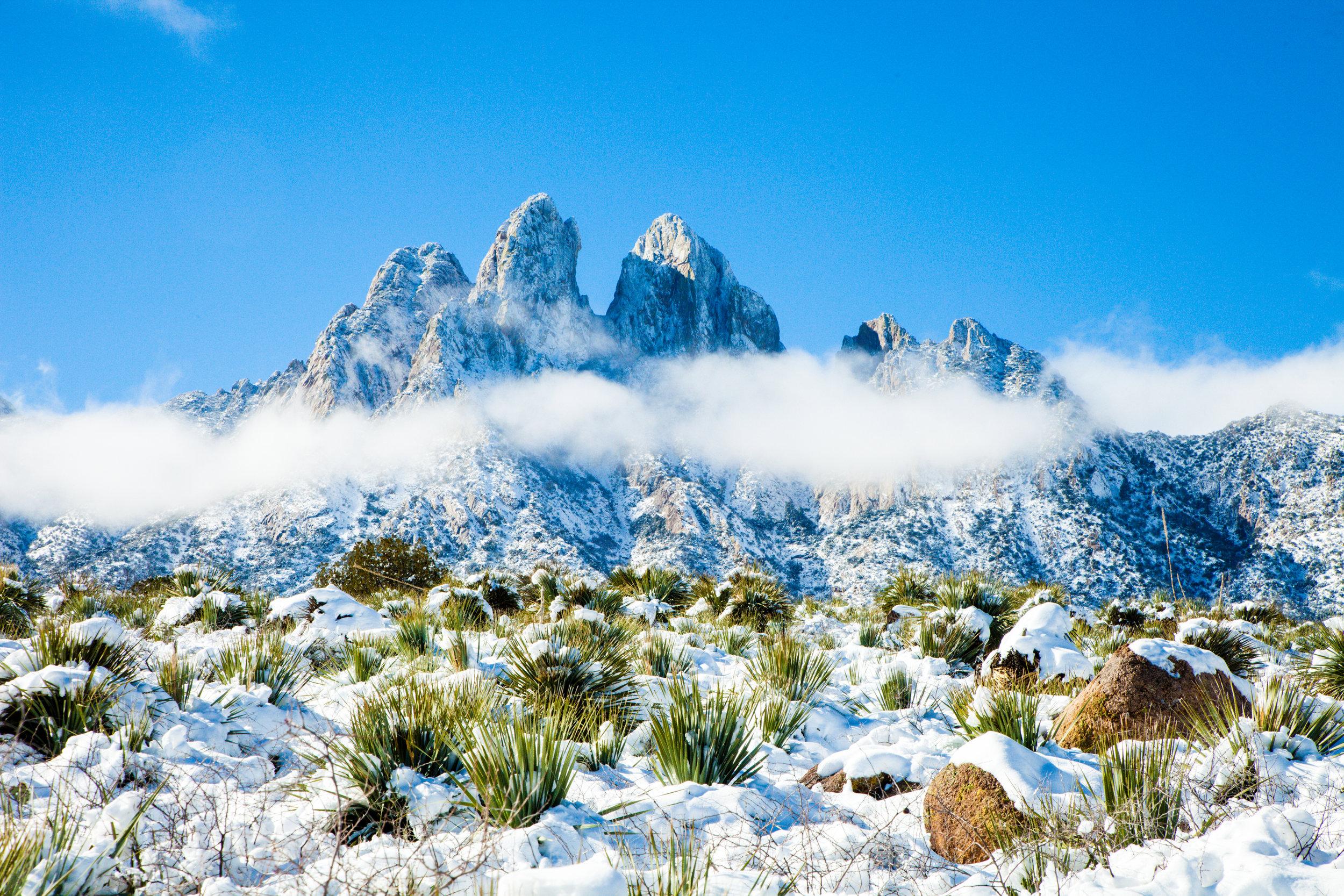 Organ Mountains-Desert Peaks
