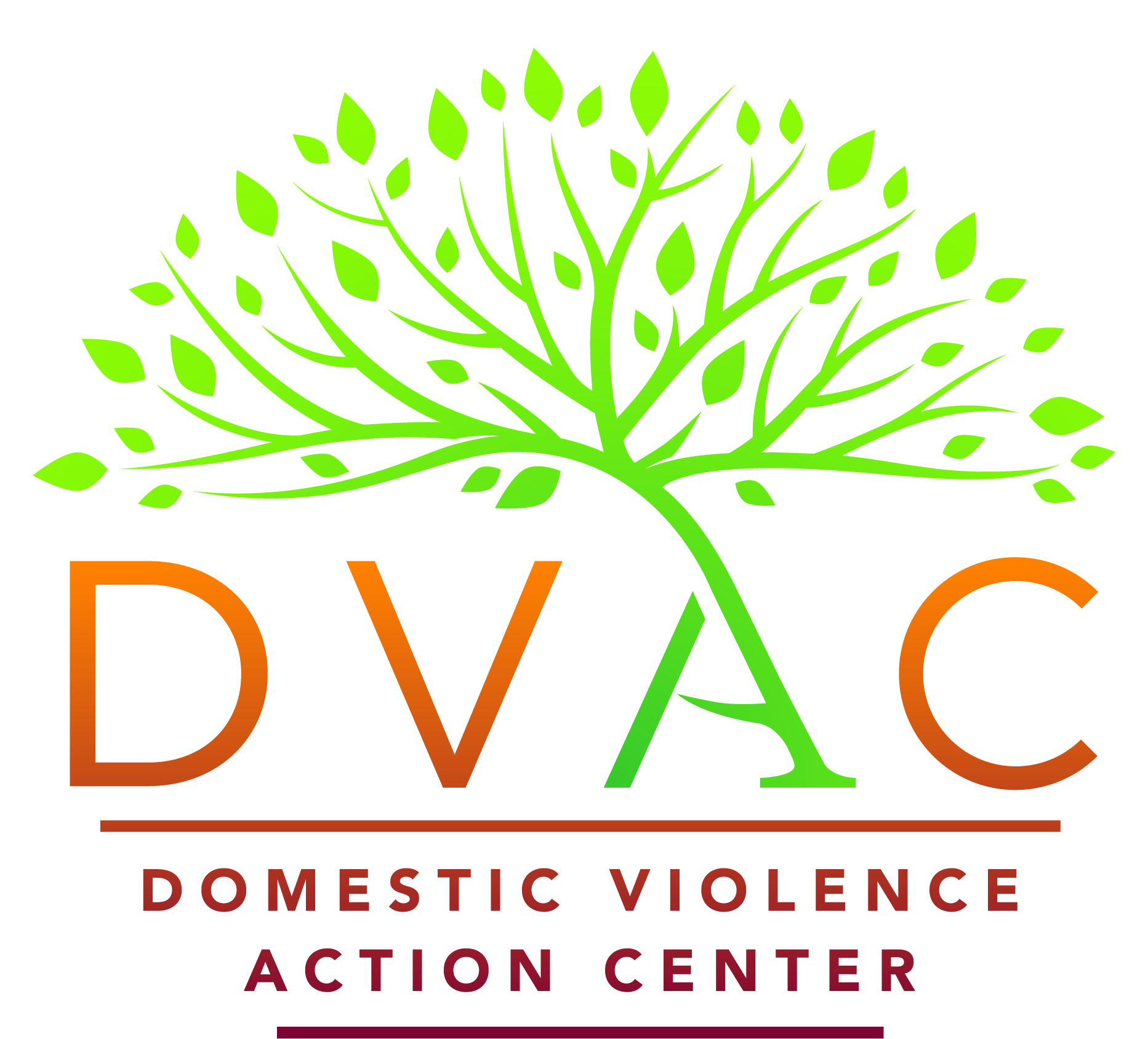 DVAC 2017 Logo - Full Logo - Color.jpg