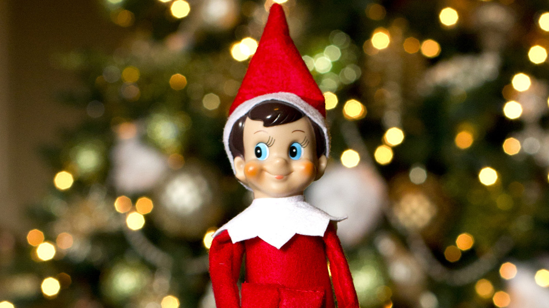 elf-shelf-today-tease-151218_ad4532b5c378f6cdacc1998b8e18de7c.jpg