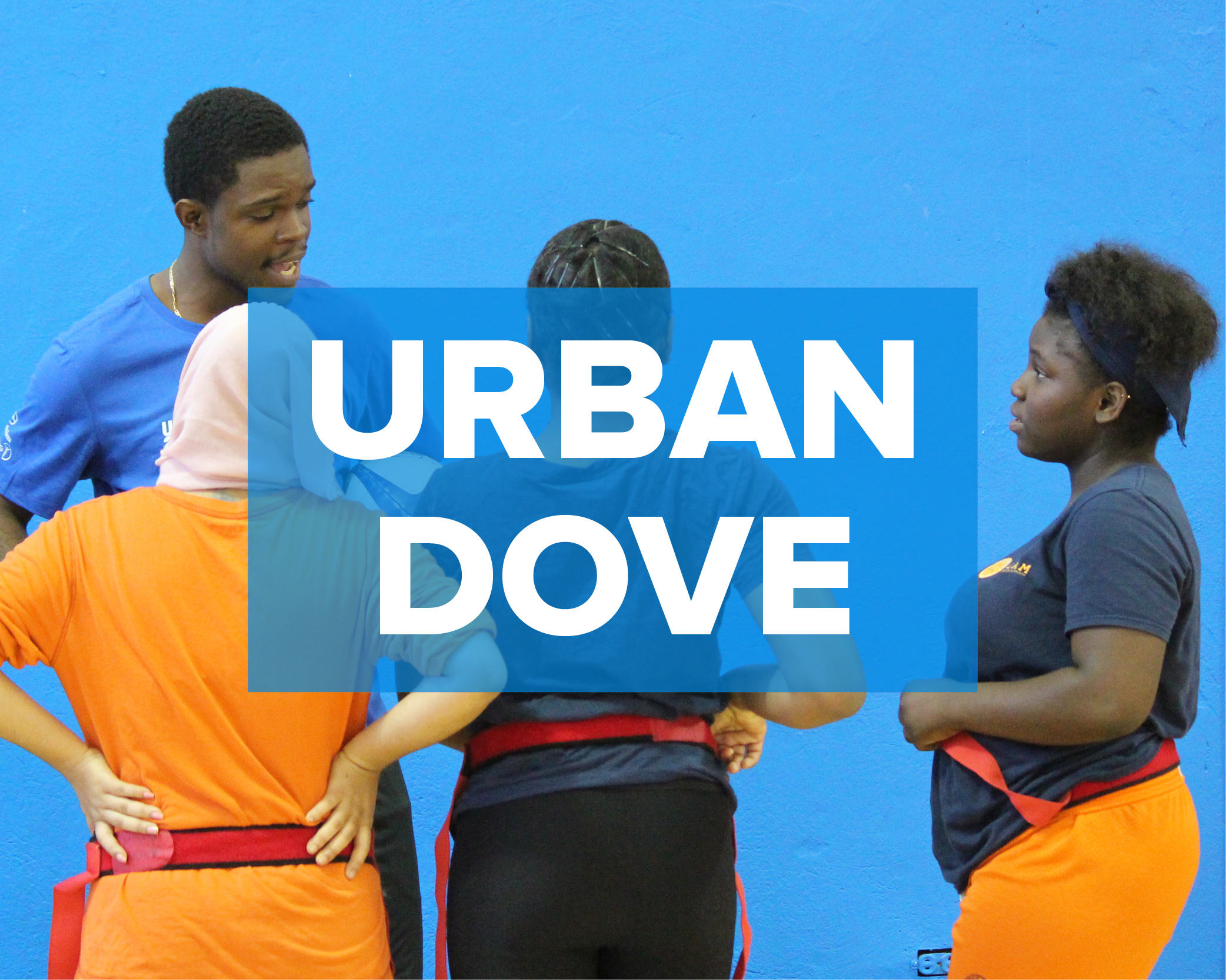 Case Study.Urban Dove.jpg