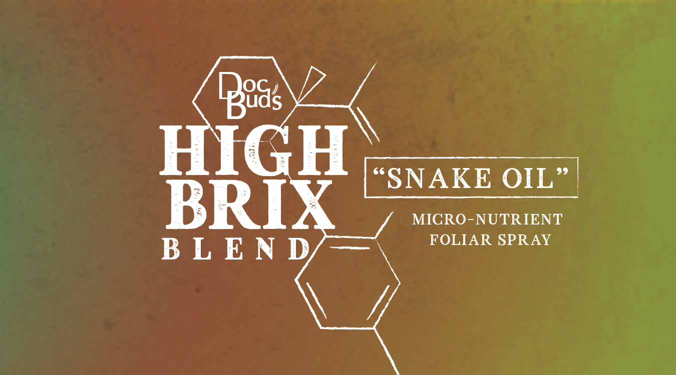 WEB-Snake Oil-01.jpg