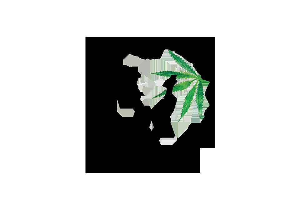Vertly+Logo (1).png