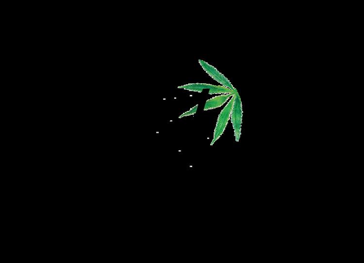 Vertly+Logo+(1).png
