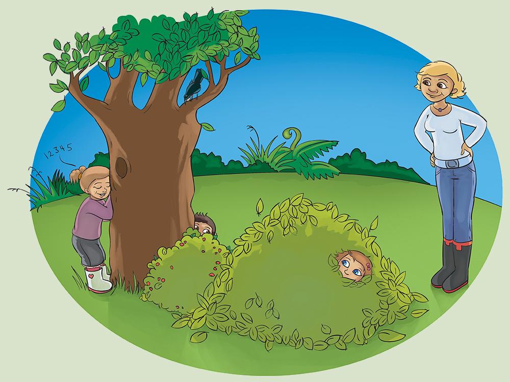 Sport Waikato Commercial Illustration