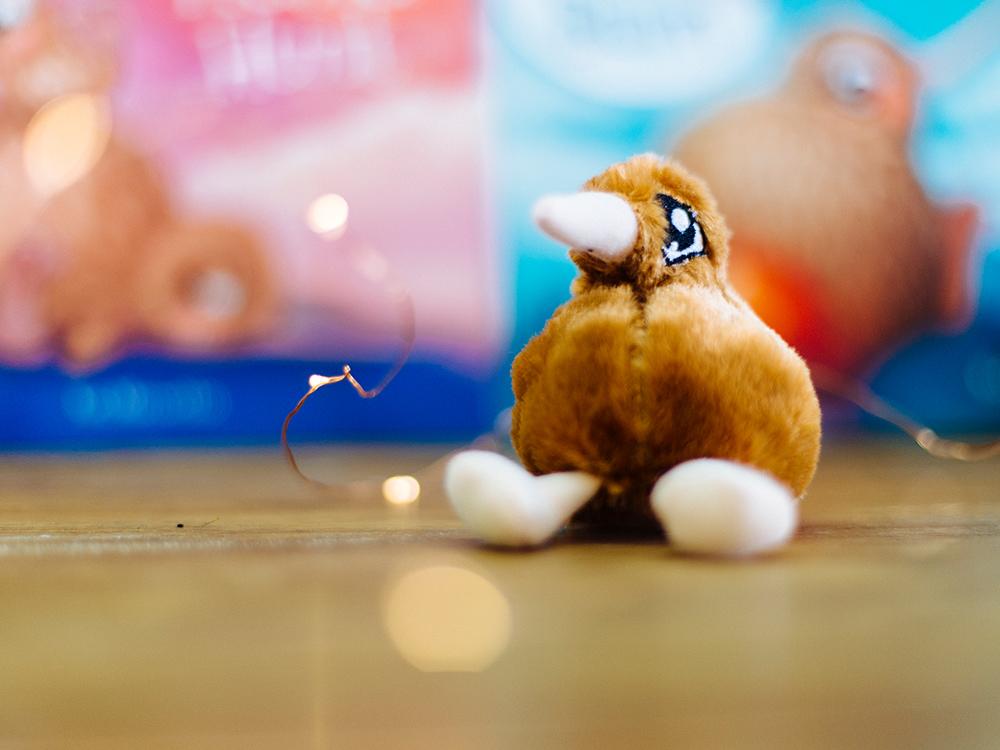Kuwi the Kiwi, soft toy