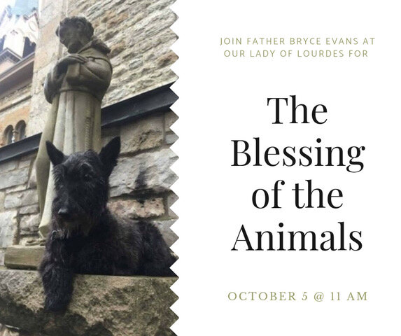 Blessing of the Animals (1).jpeg