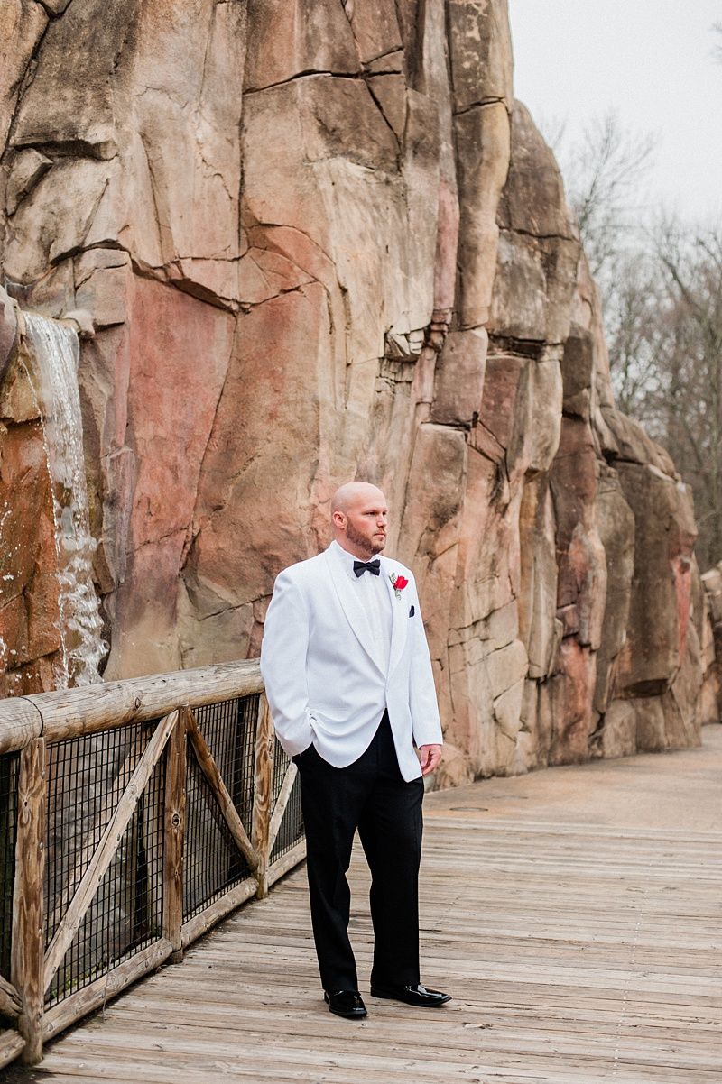black_tie_winter_formal_memphis_zoo_wedding_10.jpg