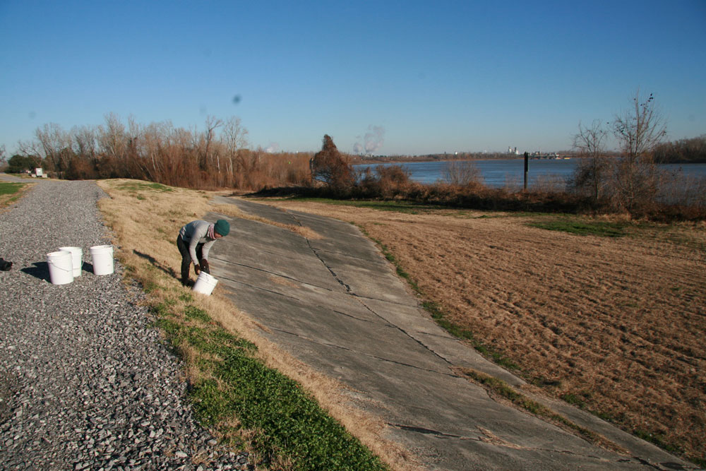 Casting the levee in Plaquemine, Louisiana.