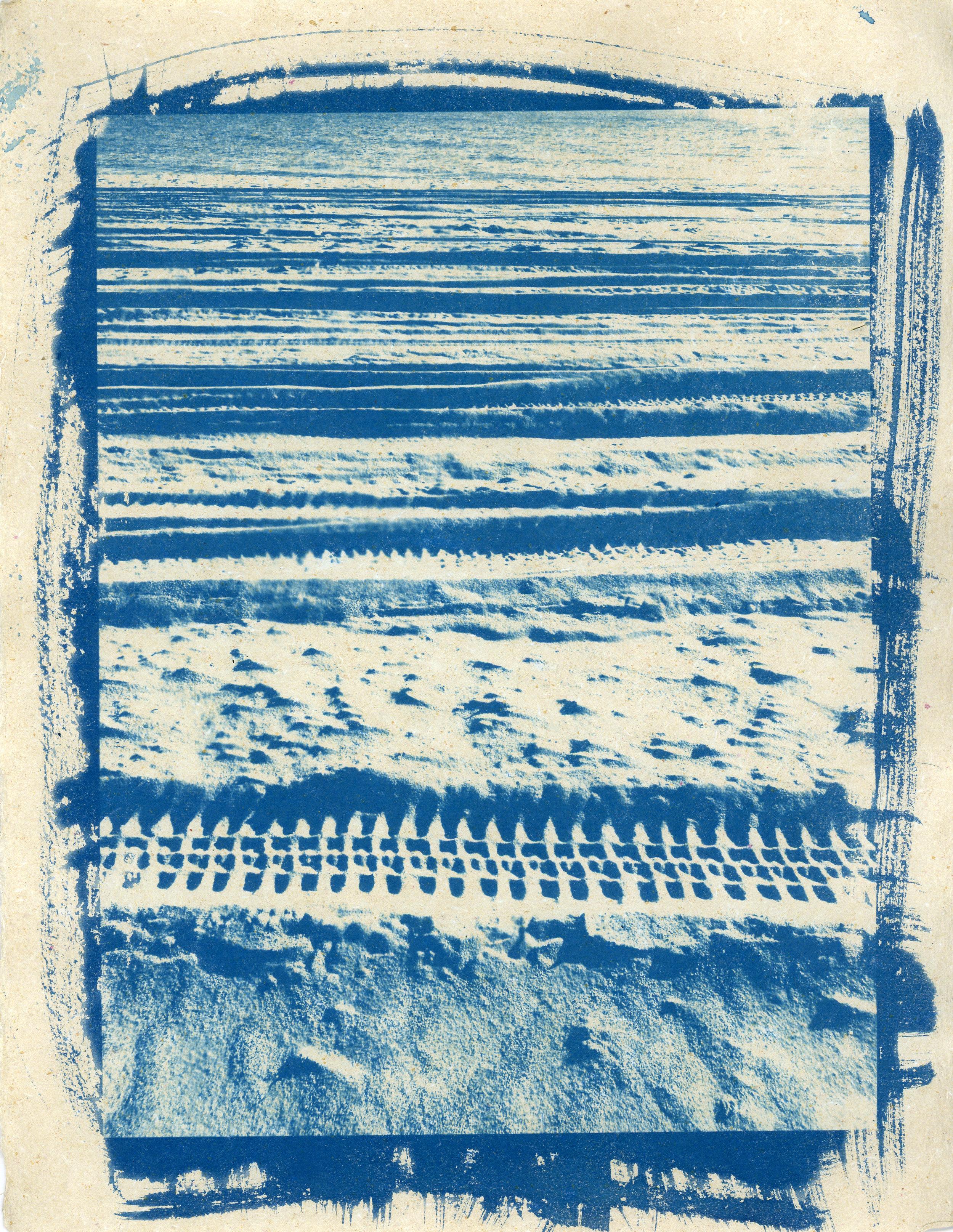 cyanotype008.jpg