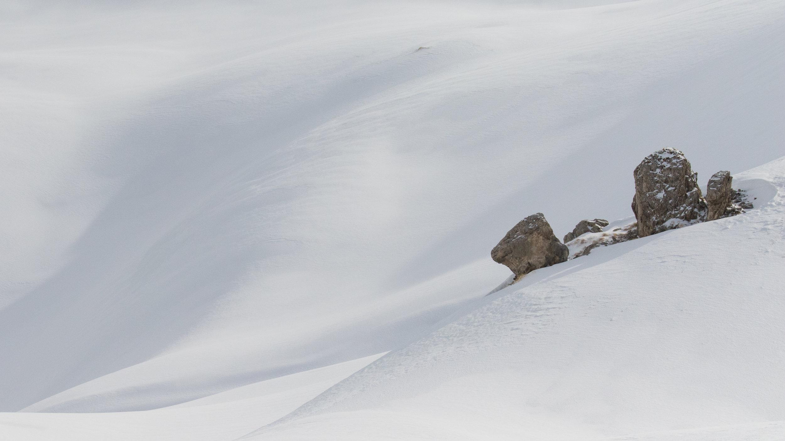 gemmipass-valais-wilderness-snow-switzerland-salva-fauna