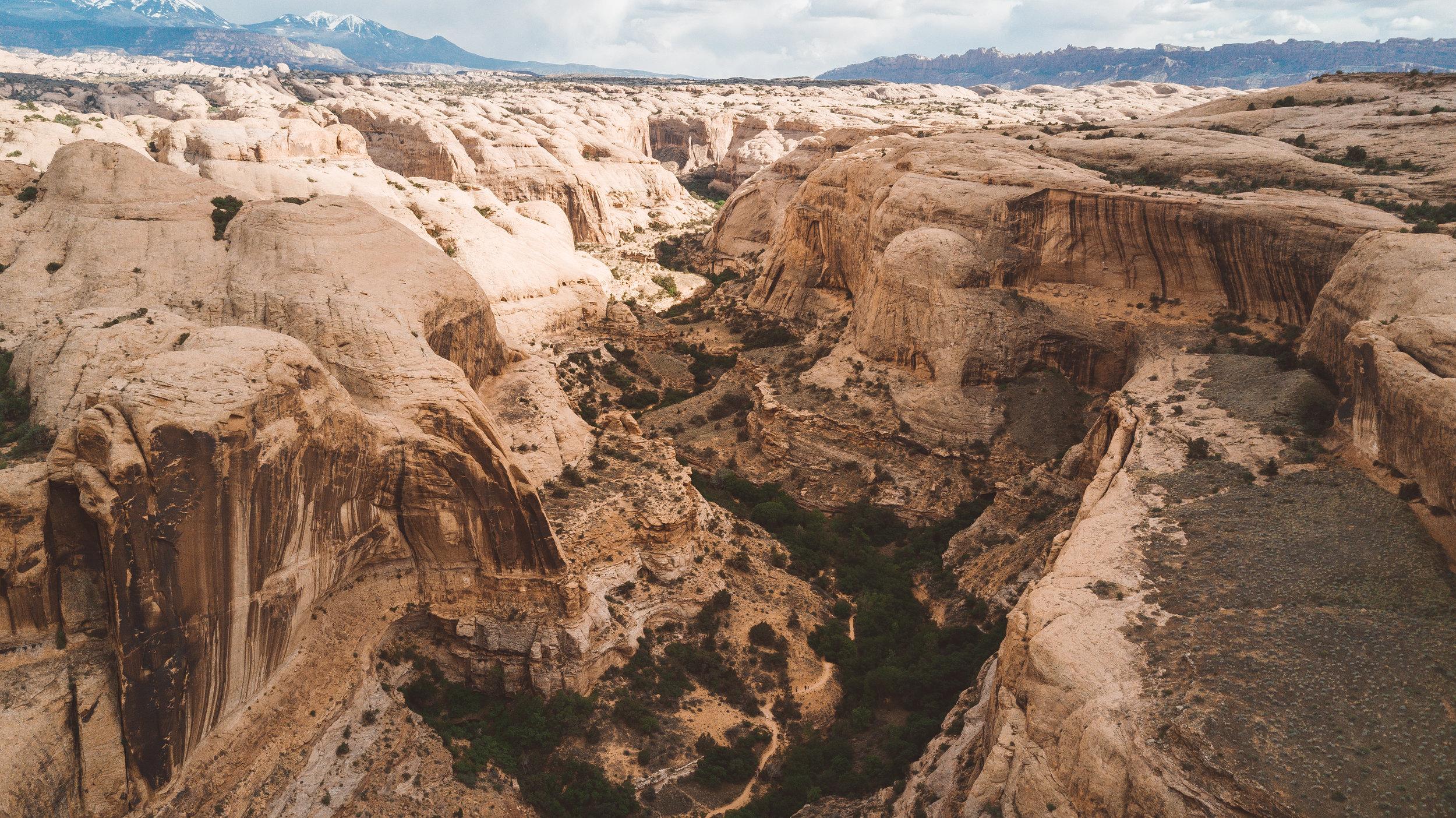 Moab-0126.jpg