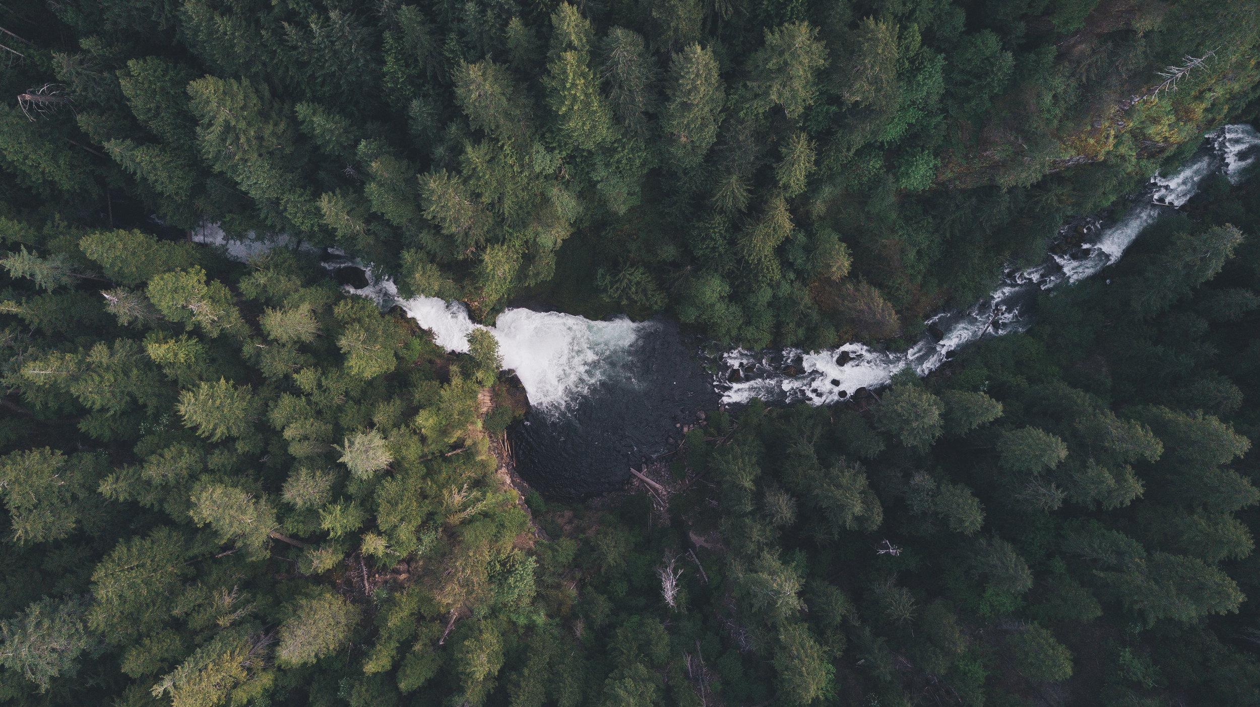 Oregon Trip-0192.jpg