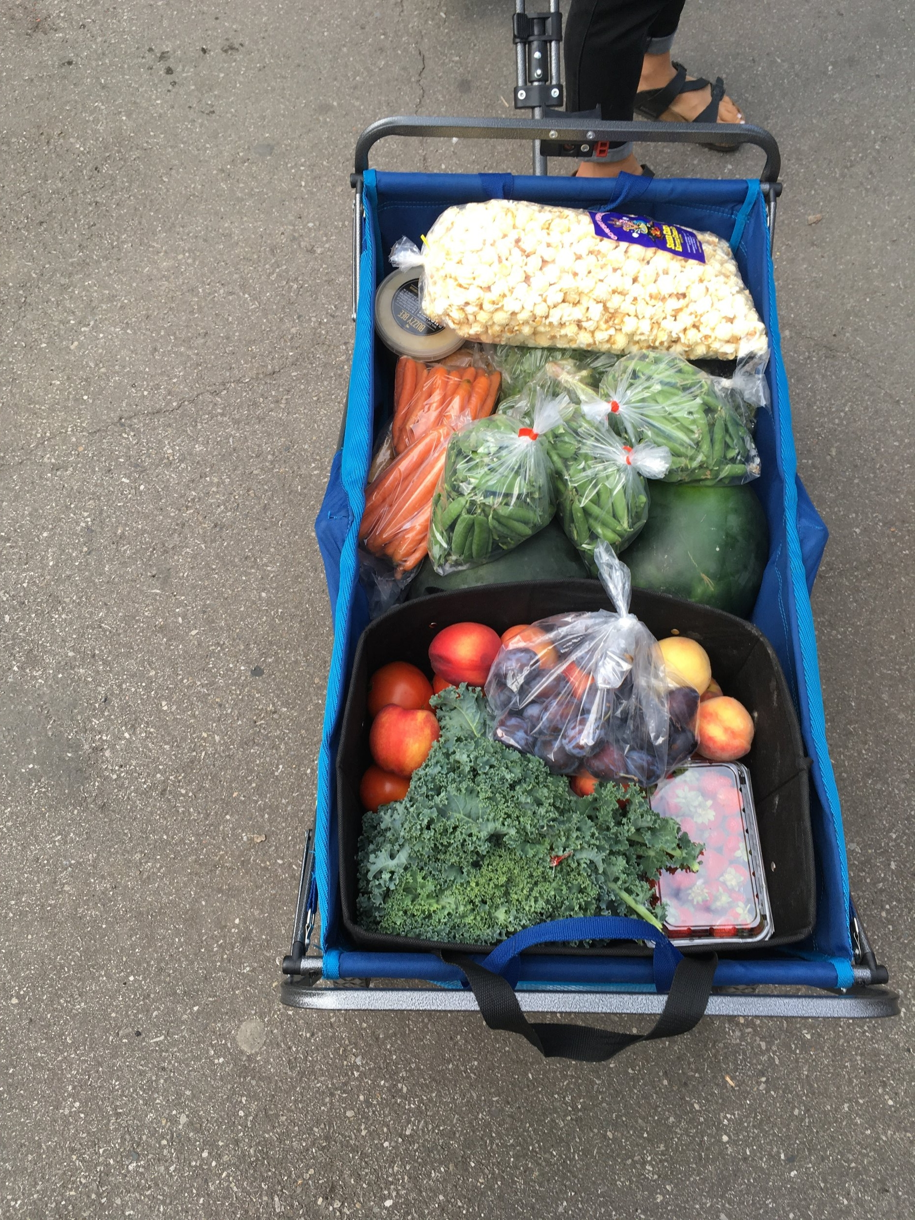 An example of a large family share from on our of local CSA programs (minus the popcorn and honey!)