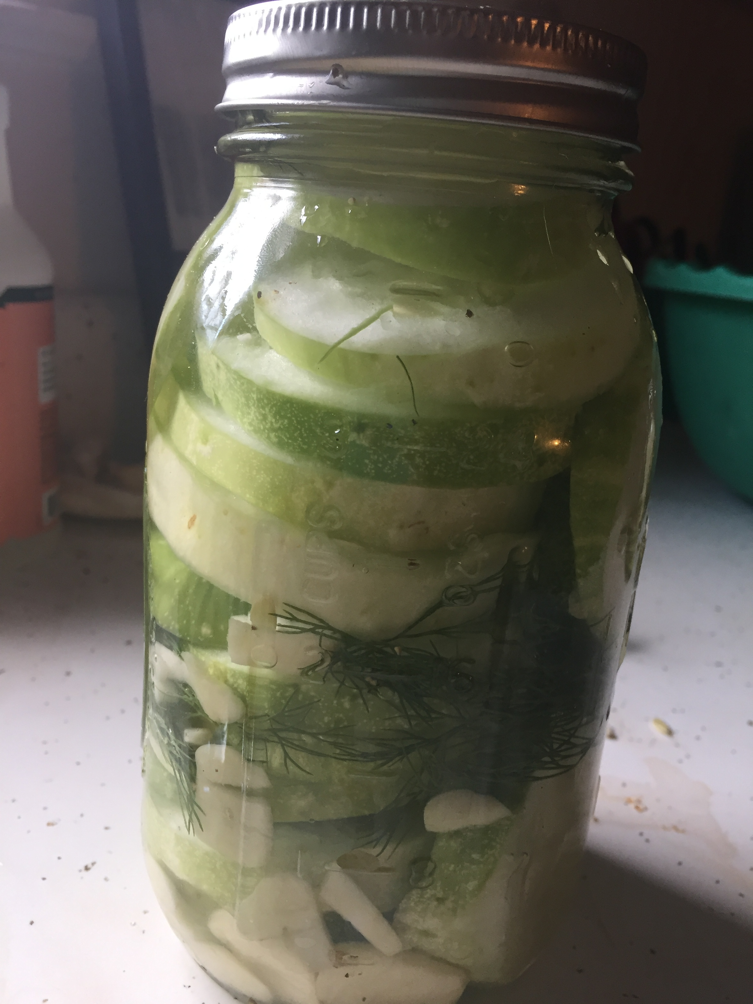Ingredients  3 Medium cucumbers (my were very girthy, which I am always in favor of (Within reason) in my pickles). I am a cucumber afficionado.  bunch of dill  3-5 cloves of garlic  tbs of sea salt  1.5 cups of white vinegar  tbs of sugar  3.5 cups of water  *Optional: crushed red pepper flakes