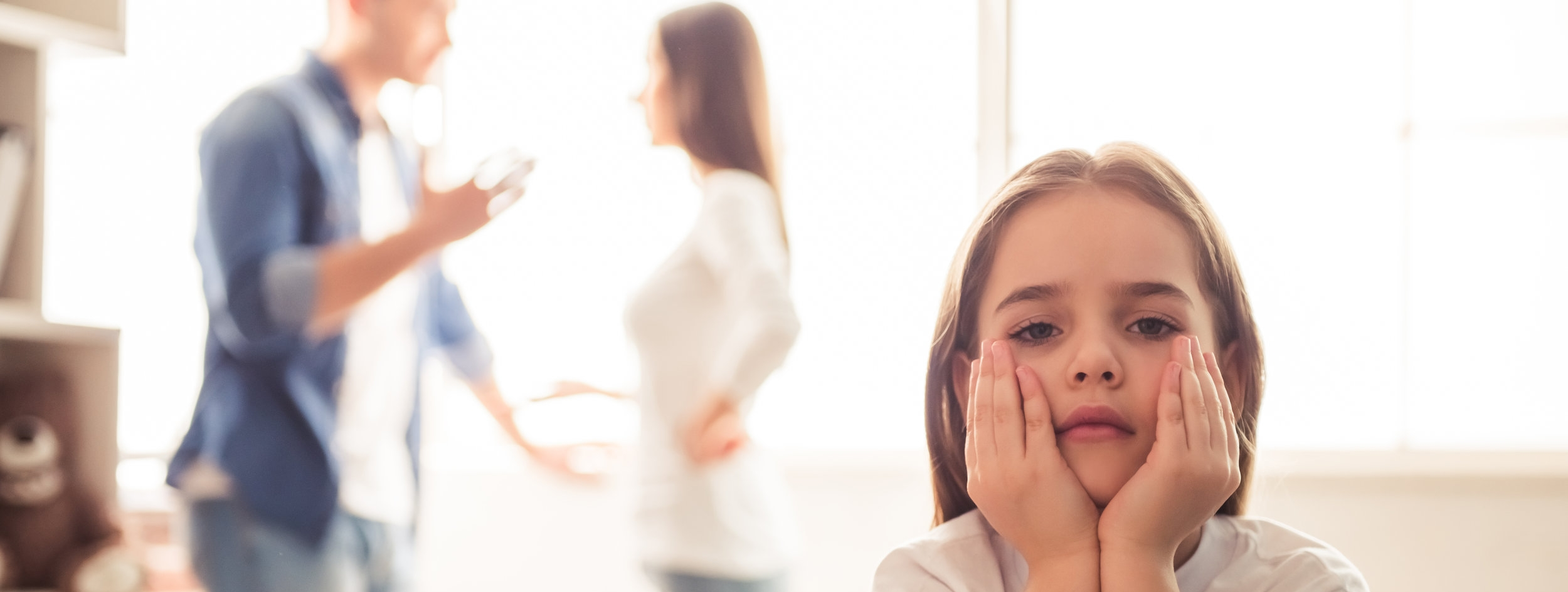 Child Custody Lawyer - Chicago Family Law.jpg