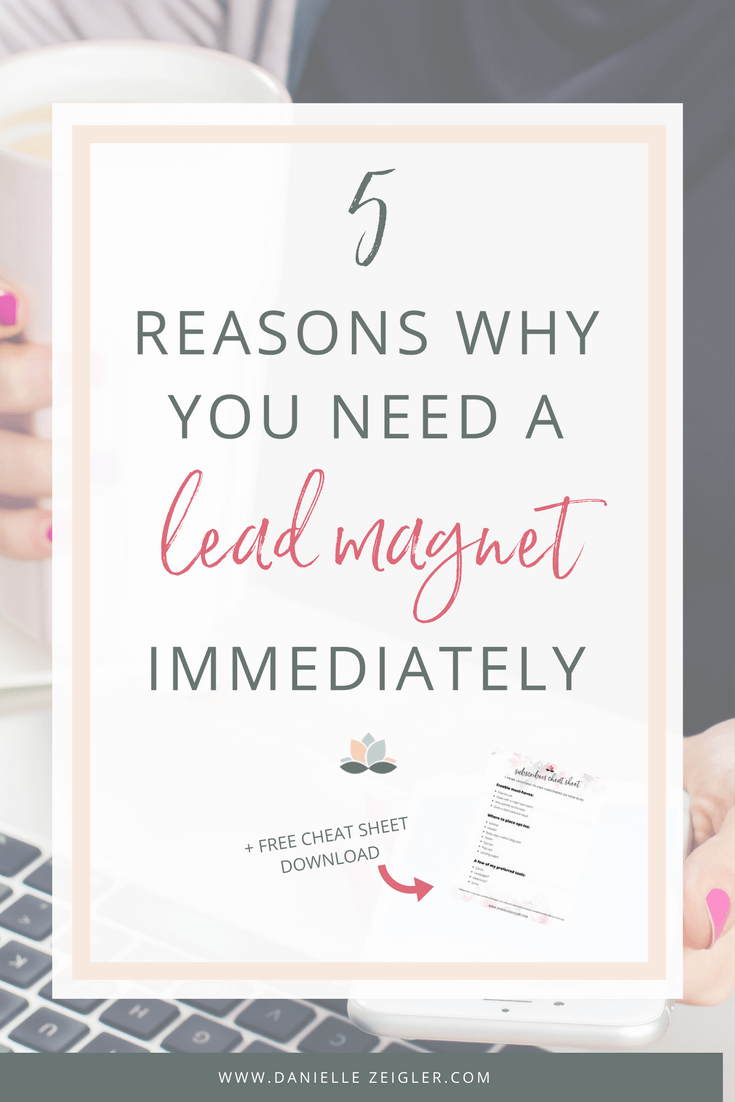 How Lead Magnets Will Grow Your List + Free Susbribers Cheat Sheet