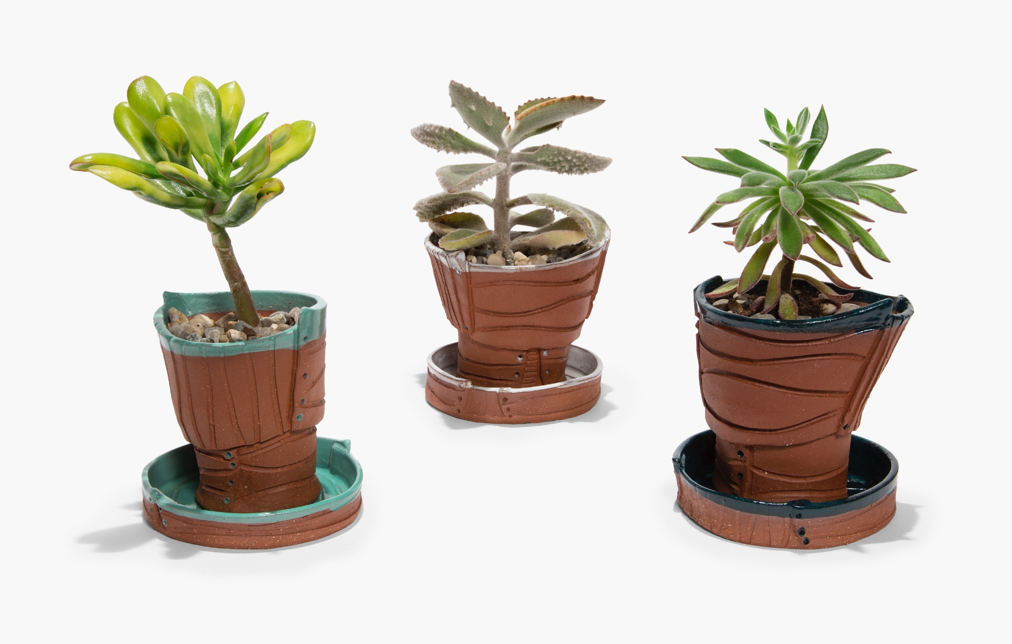 Terra Cotta Succulent Pots