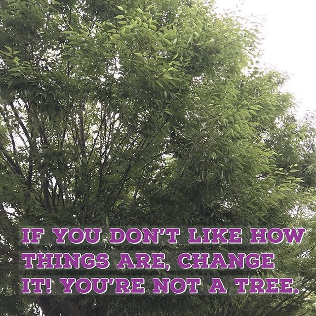 Trees don't have a choice. You do. Choose wisely. #motivationmonday