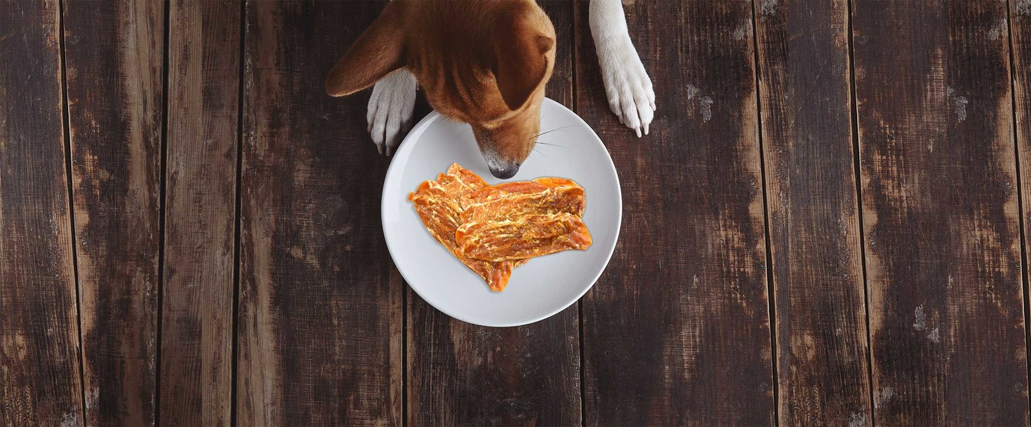 Safe Chicken Jerky Made In The Usa Nala And Luca S
