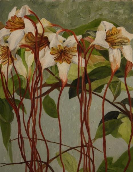 Cinnamon & Sage   14 x 18in,  oil on canvas