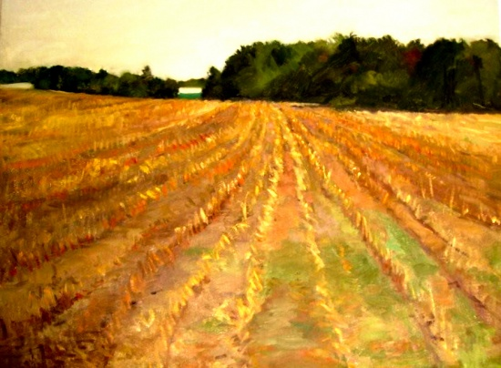 "Cornfield   18 x 14""  , oil on canvas"
