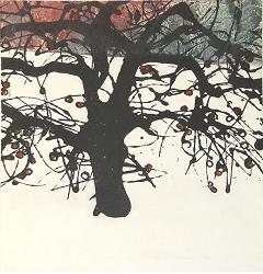 "Winter Apple Tree 2 Sugar Lift Aquatint, Carborundum print  14"" x 13 1/2"""