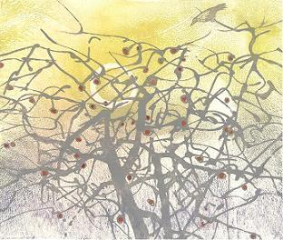 "Winter Apple Tree 5 Sugar Lift Aquatint, Carborundum print  14"" x 13 1/2"""