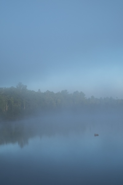 Dawn Watson, %22Lodge Lake Series 3.jpg