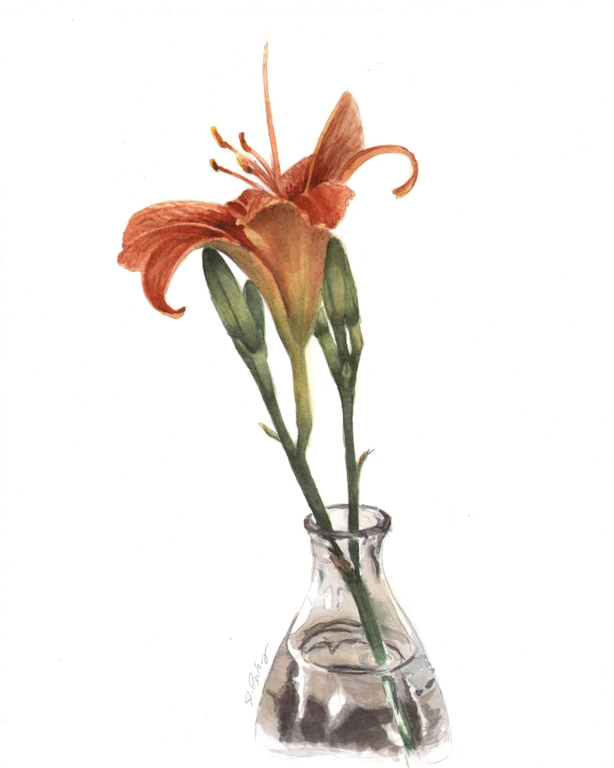 Lily in Glass Vase