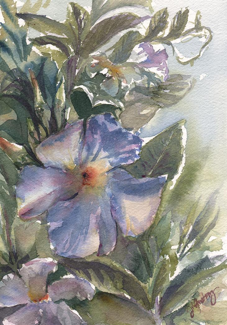 Trumpeting Flowers