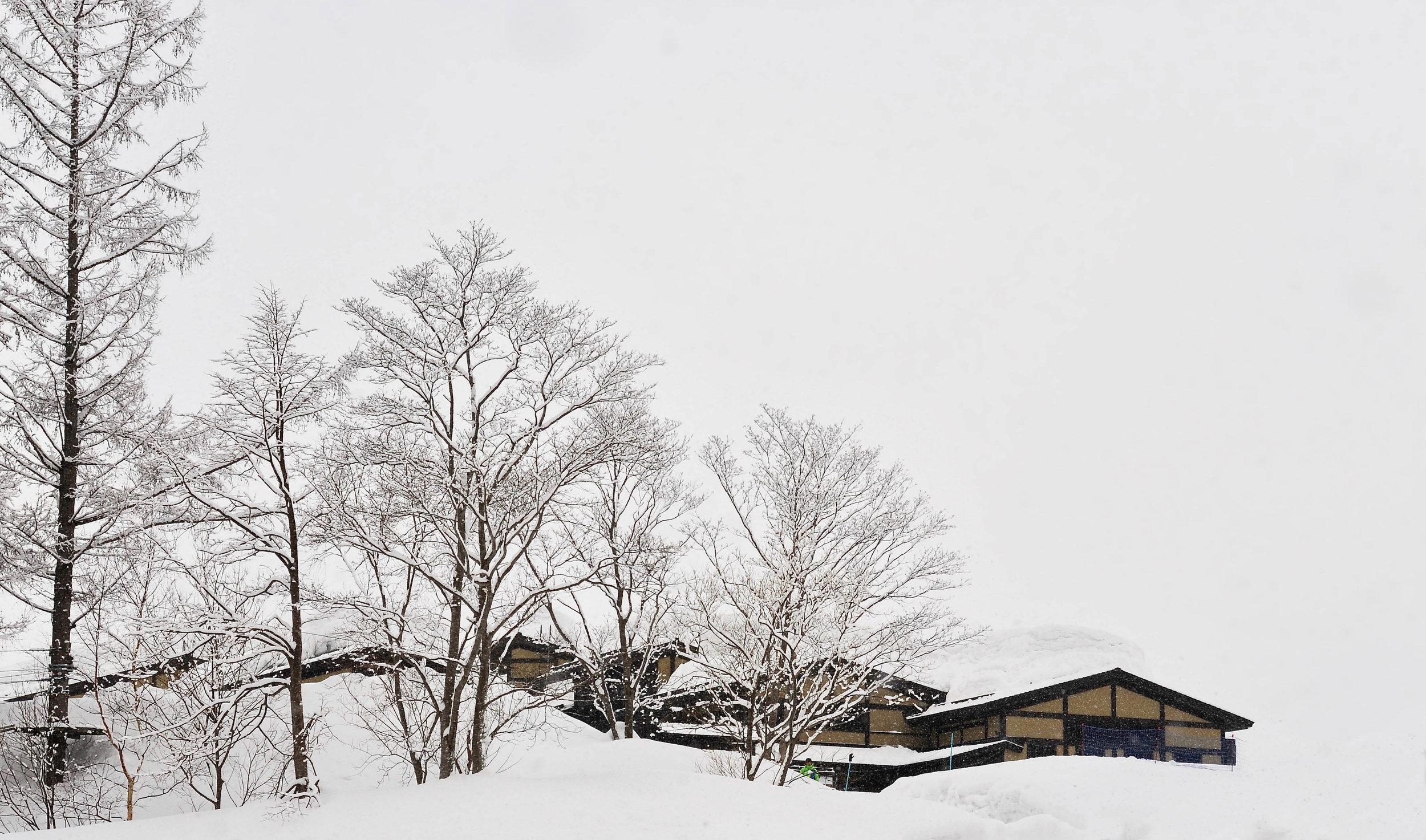 Hokkaido Haiku - 21.jpg