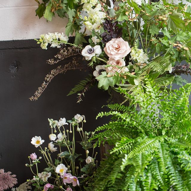 Sword ferns, roses, and maple branches adorn the ceremony space with perfect Pacific NW grace. @goslingandflora @unionpine @congratulationsbeautiful