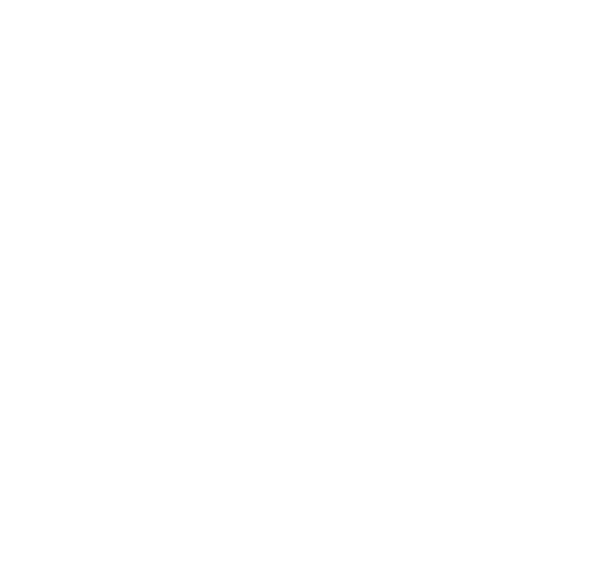 Adidas Delaram Pourabdi .png