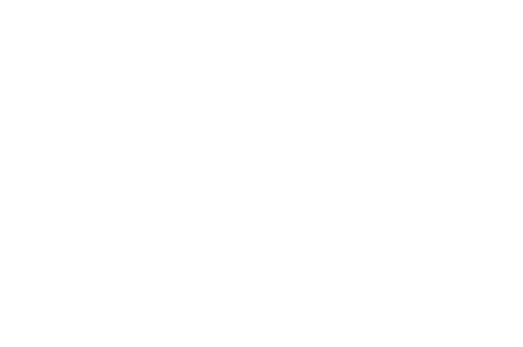 OFFICIAL SELECTION - La danza in 1 minuto - 2019-2.png