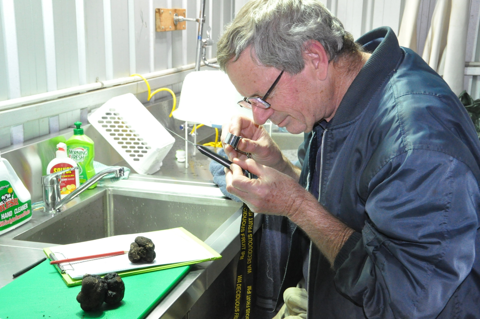 Stewart Learmonth DAFWA examining a pest found in a truffle.