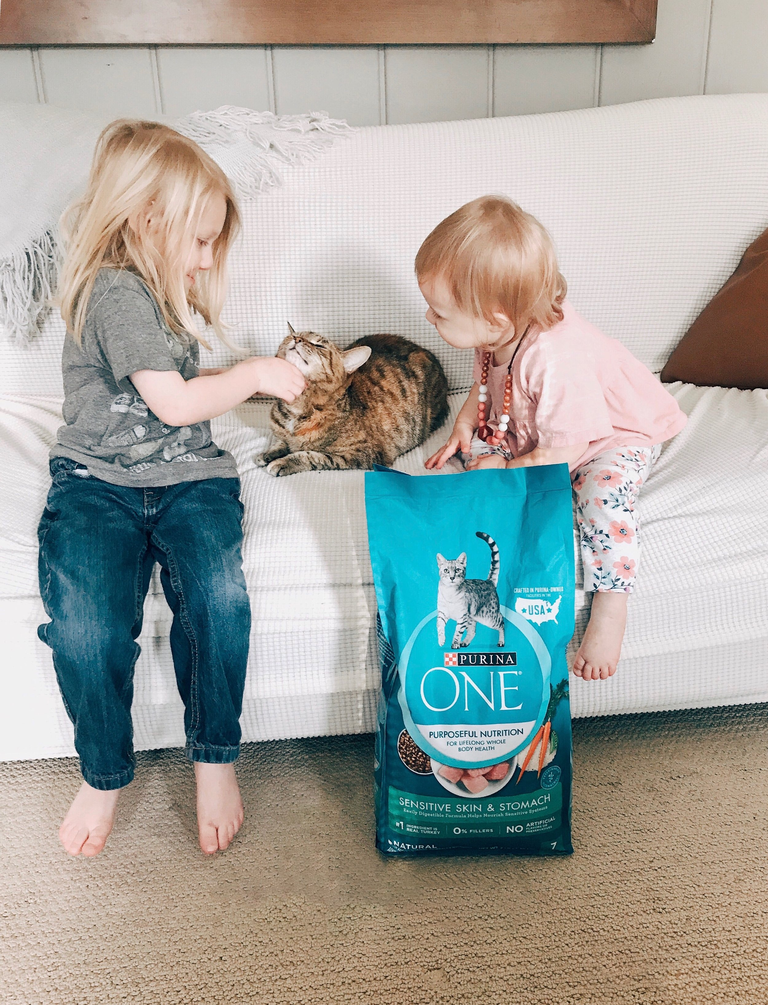 Start your pet's healthier journey by joining me in the 28-day challenge!