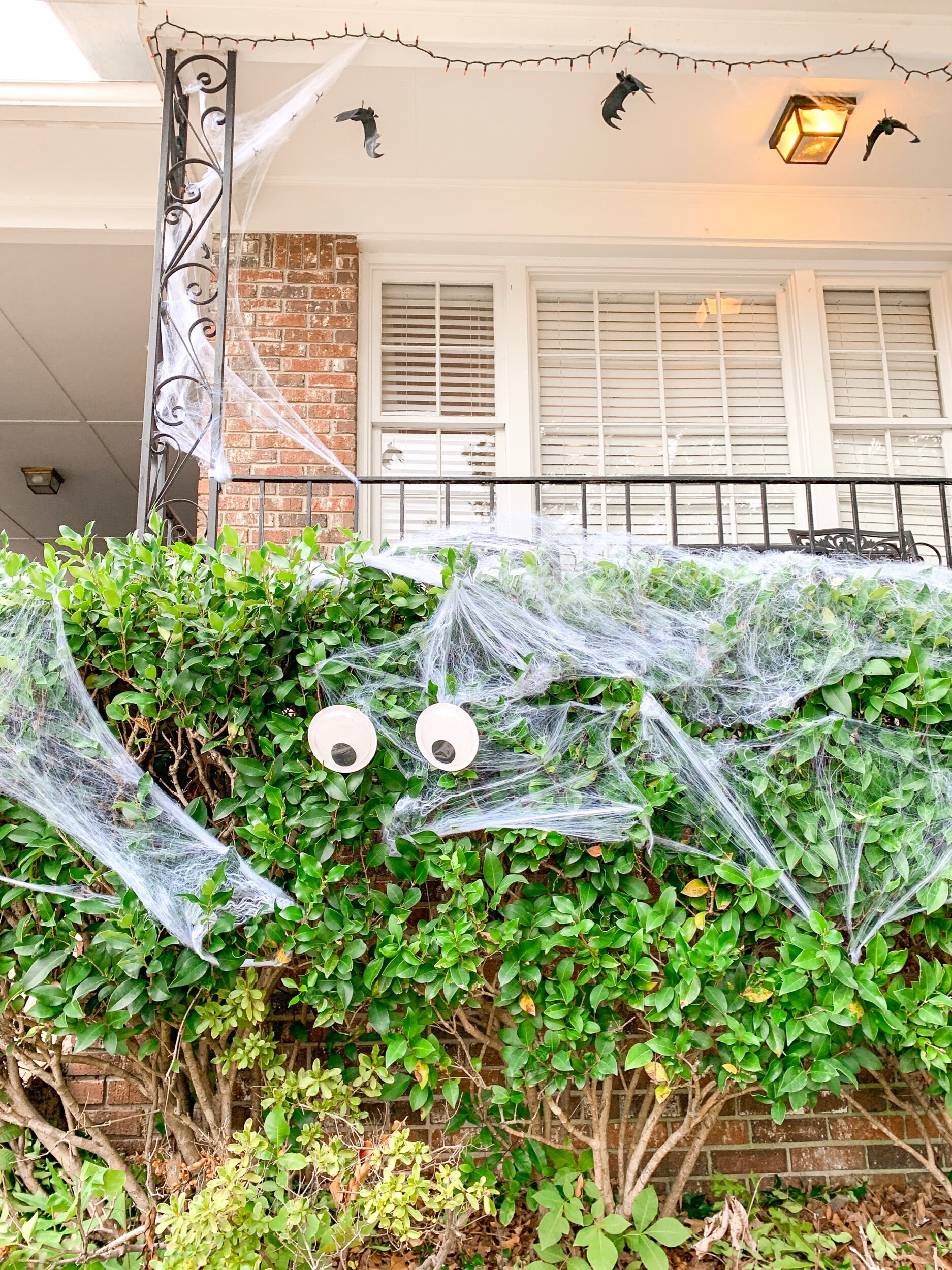 Got 5 plastic bats for $5. One pack of spider webbing covered everything outside. Everything. One set of googly glow in the dark eyes = $1. Love finding affordable Halloween decorations for only a dollar.