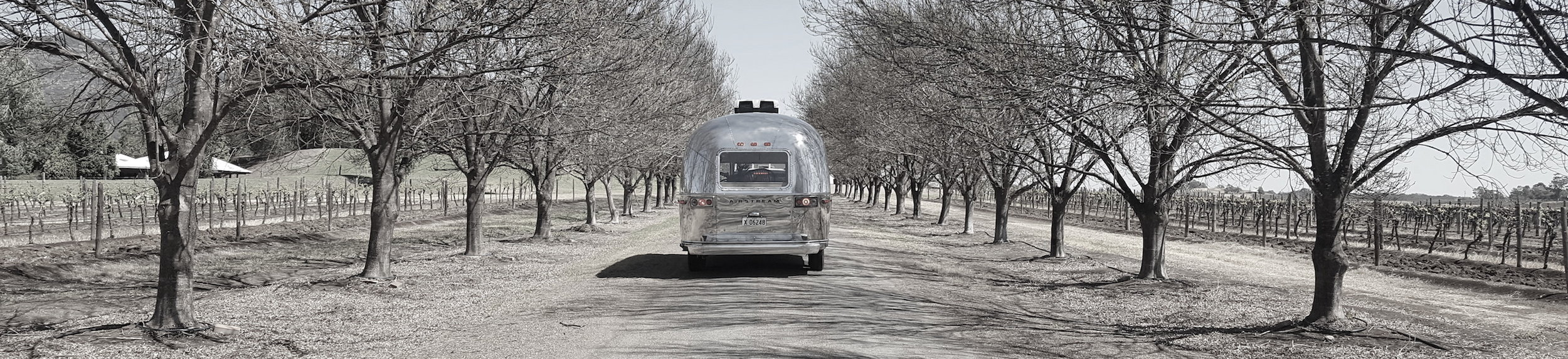 TAS_exterior_scaraborough driveway_wideshot_rear_l_sml_b-w.jpg