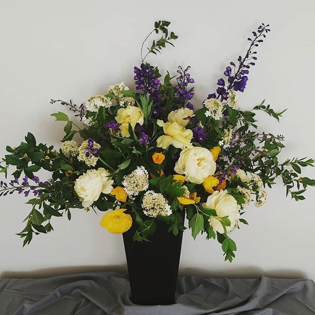 """Congrats Sumner High School Seniors! Have a wonderful showcase tonight! . . This arrangement of luscious #localflowers is topping off at about 40"""" high and wide. Whoot! Thank you #swgm #ojedafarms #jellomoldfarm #fieldtoheart #foothillsflowers and #charleslittleandco . So lucky to be able to create with your fine products. . . #seattleflorist #seattleflowerdelivery #seattleflowersubscription #seattlefloraldesigner #seattleweddingflowers #seattlesmallbusiness #slowflowers #pnw #sumnerhighschool #biggerisbetter #ilovemyjob #laughinggirl #laughinggirlflowers"""