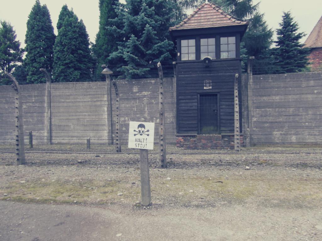 Auschwitz-1024x768.jpg