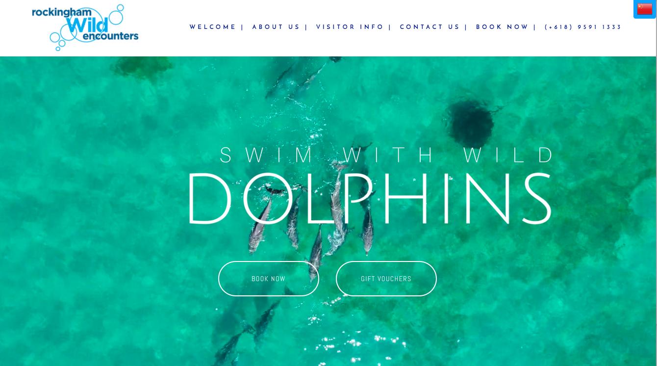 Rockingham Dolphins Rockingham Wild Encounters  www.dolphins.com.au