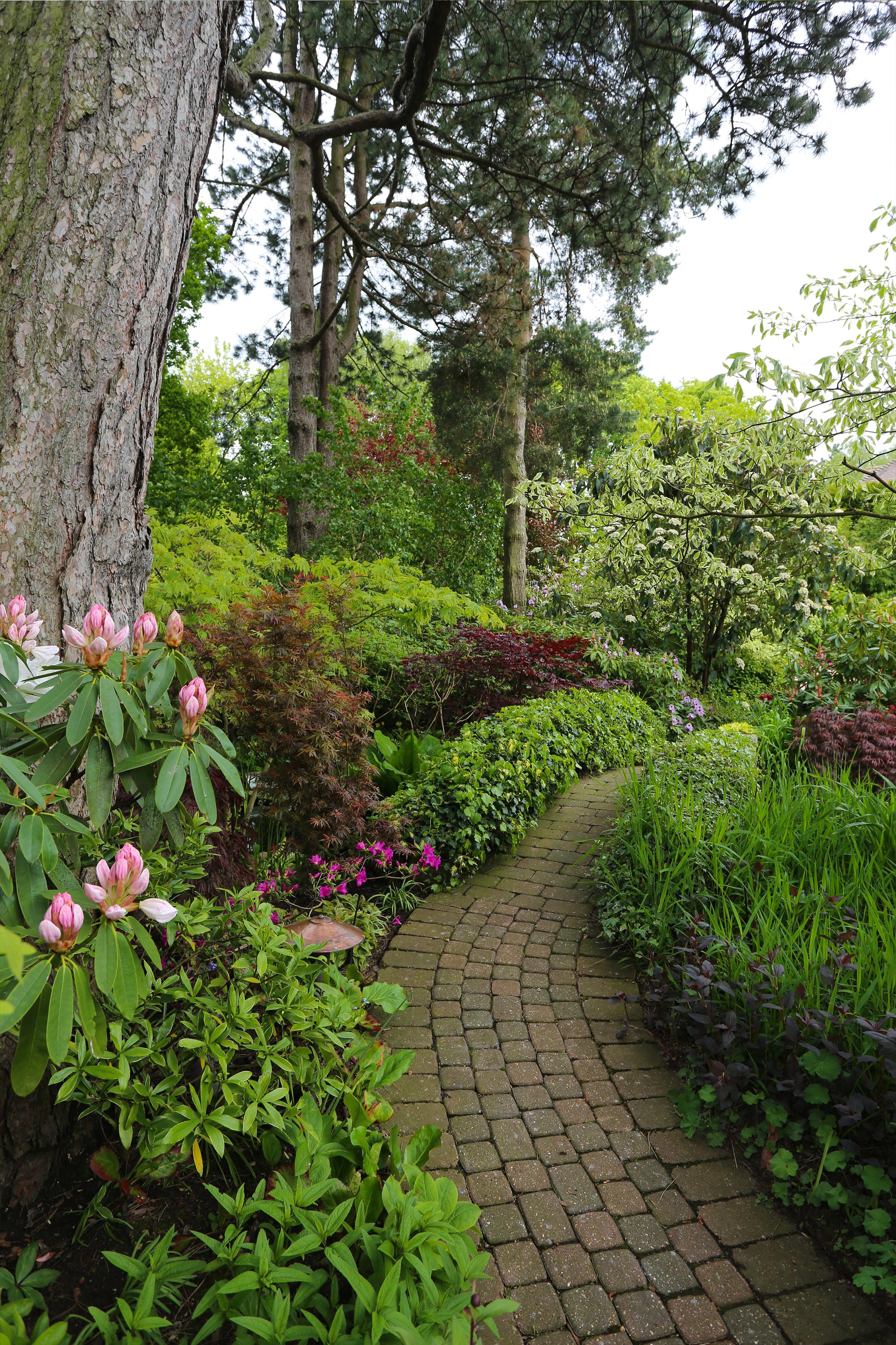 garden_walkway.png