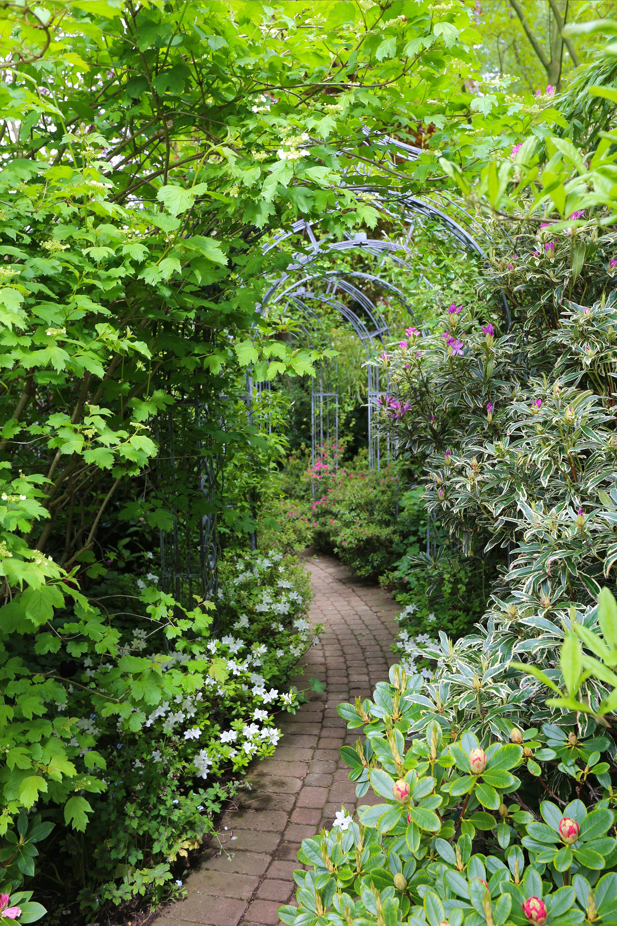 garden_walkway_archway.png
