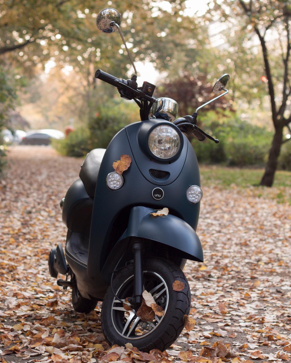 unu-in-autumn.jpg