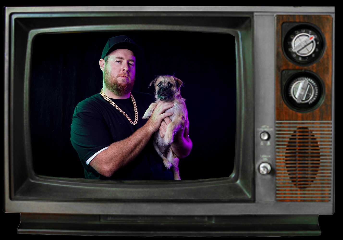 TV and dog.jpg